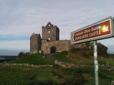 Dungaire castle.jpg